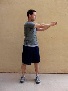 torso rotations